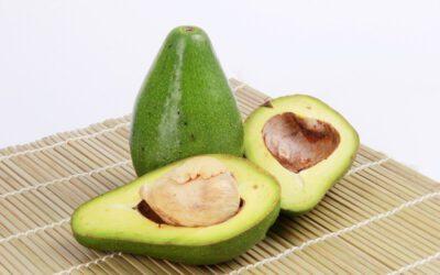 katten en avocado