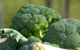 katten en broccoli